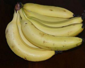 בננה גידול צמח